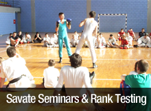 savate seminars and rank testing